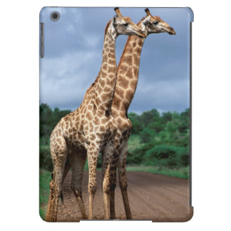 A Pair Of Giraffes On Road, Kruger National iPad Air Cover
