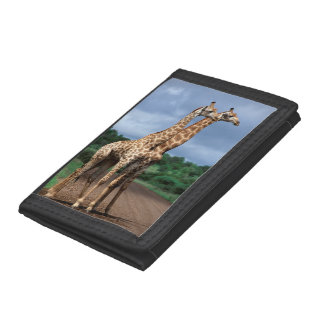 A Pair Of Giraffes On Road, Kruger National Tri-fold Wallet