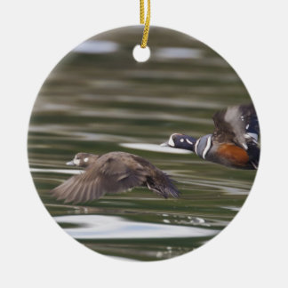 A pair of harlequin ducks take flight christmas ornament