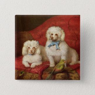 A Pair of Poodles 15 Cm Square Badge