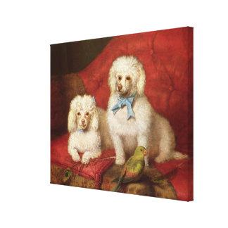 A Pair of Poodles Canvas Print