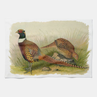 A pair of Ring necked pheasants in a grassy field Hand Towel