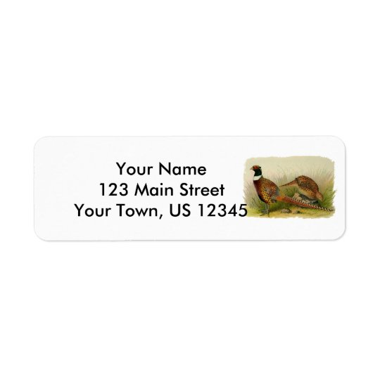 A pair of Ring necked pheasants in a grassy field Return Address Label