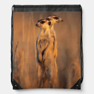 A pair of Suricates standing on a rock at sunset Drawstring Bag