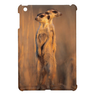 A pair of Suricates standing on a rock at sunset iPad Mini Cases