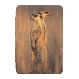 A pair of Suricates standing on a rock at sunset iPad Mini Cover