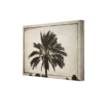 A Palm Tree on a Beige Background Canvas Print
