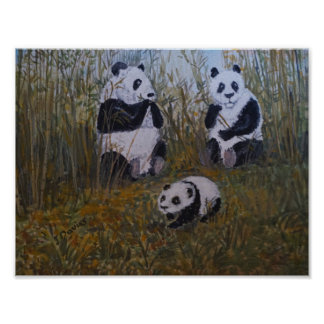 A Panda Family Poster