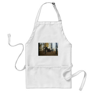 A park standard apron