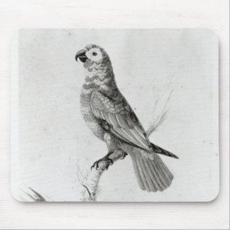 A Parrot, 1786 Mouse Mat