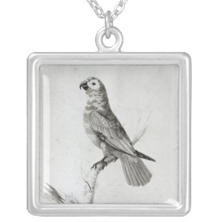 A Parrot, 1786 Silver Plated Necklace