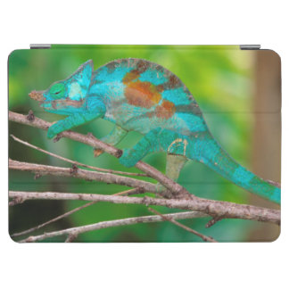 A Parson's Chameleon moving along a branch 2 iPad Air Cover
