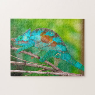 A Parson's Chameleon moving along a branch 2 Jigsaw Puzzle