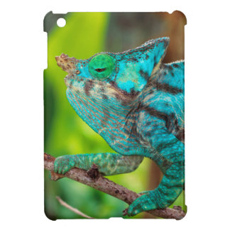 A Parson's Chameleon moving along a branch Cover For The iPad Mini