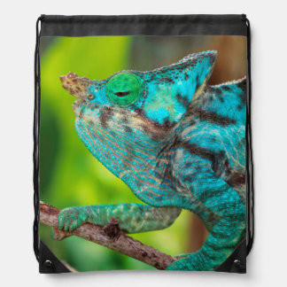 A Parson's Chameleon moving along a branch Drawstring Bag