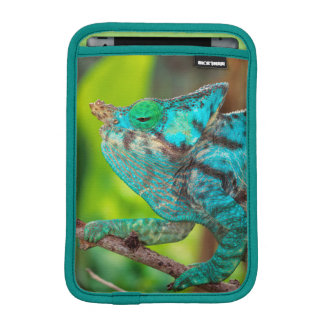 A Parson's Chameleon moving along a branch iPad Mini Sleeve