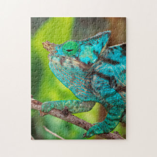 A Parson's Chameleon moving along a branch Jigsaw Puzzle