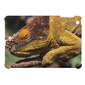 A Parson's Chameleon perched on a branch iPad Mini Covers