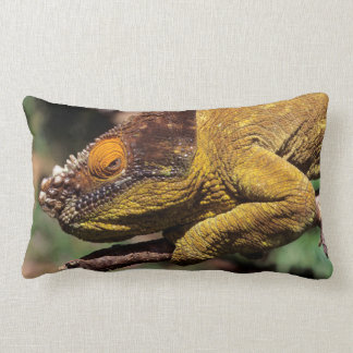A Parson's Chameleon perched on a branch Lumbar Cushion
