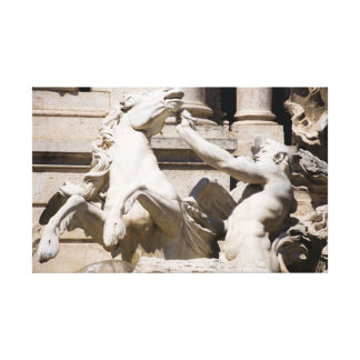 A part of The Trevi Canvas Print