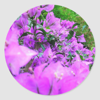 A Passion For Purple Round Sticker