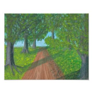 A path through woods photo art
