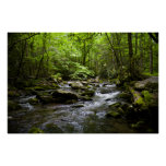 A Peaceful Smoky Mountain Stream Poster