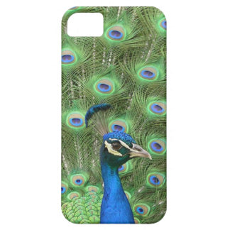 A Peacock Case-Mate iPhone 5 Case.