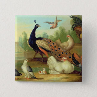 A Peacock, Doves, Chickens and a Jay in a Park 15 Cm Square Badge