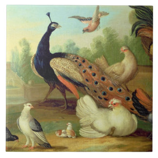 A Peacock, Doves, Chickens and a Jay in a Park Large Square Tile