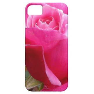A Perfect Deep Pink English Rose Barely There iPhone 5 Case