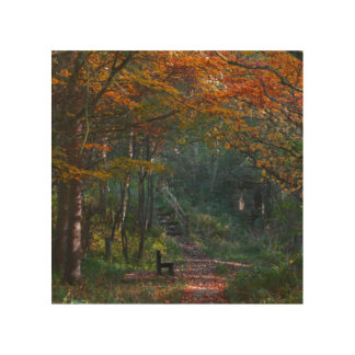 A photograph of a Autumn landscape in Lanchester Wood Print