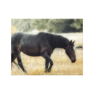 A photograph of a horse with soft focus canvas print