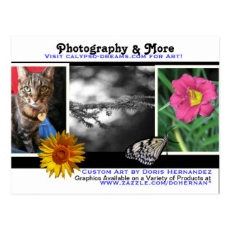 A* Photography & More Business Card Postcard