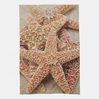 A Pile of Large Sugar Starfish Kitchen Towel