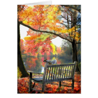 A Place to sit Gallery Greeting Card
