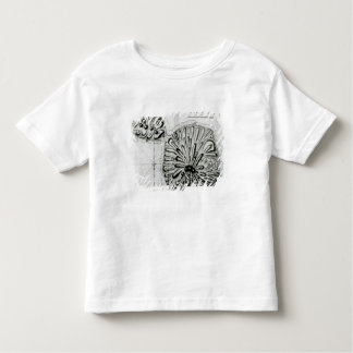 A Plan of King Georges Island or Otheite, 1769 Toddler T-Shirt
