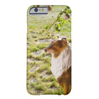 A plastic dog in a garden. barely there iPhone 6 case