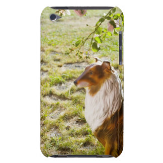 A plastic dog in a garden. iPod touch covers