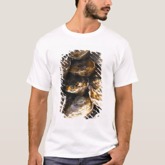 A plate of oysters. T-Shirt