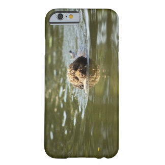 A playful dog cools off in the summer heat. barely there iPhone 6 case