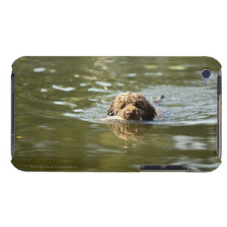 A playful dog cools off in the summer heat. Case-Mate iPod touch case