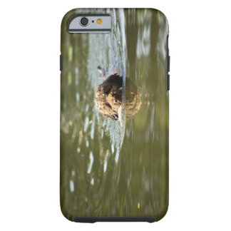 A playful dog cools off in the summer heat. tough iPhone 6 case