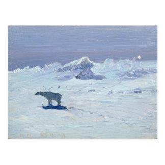 A Polar Bear Hunting in Moonlit Night, 1899 Postcard