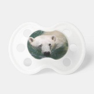 A polar bear just chilling dummy