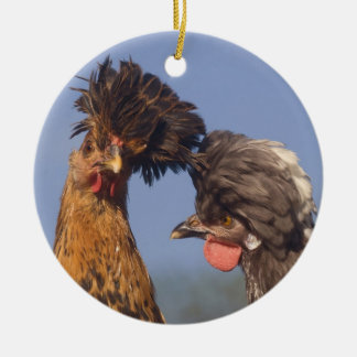 A Polish Chicken Christmas Christmas Ornament