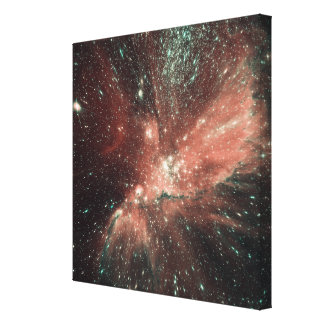 A population of infant stars in the Milky Way Canvas Print