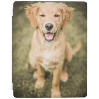 A Portrait Of A Golden Retriever Puppy iPad Cover