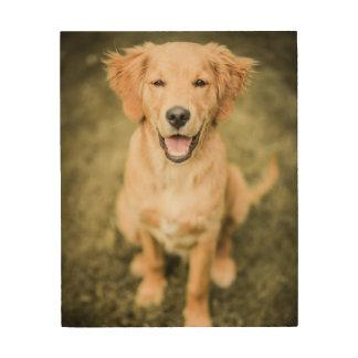 A Portrait Of A Golden Retriever Puppy Wood Print