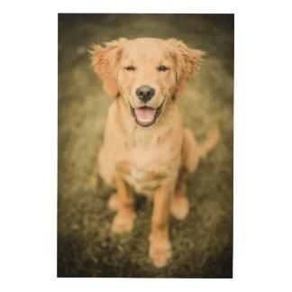 A Portrait Of A Golden Retriever Puppy Wood Wall Art